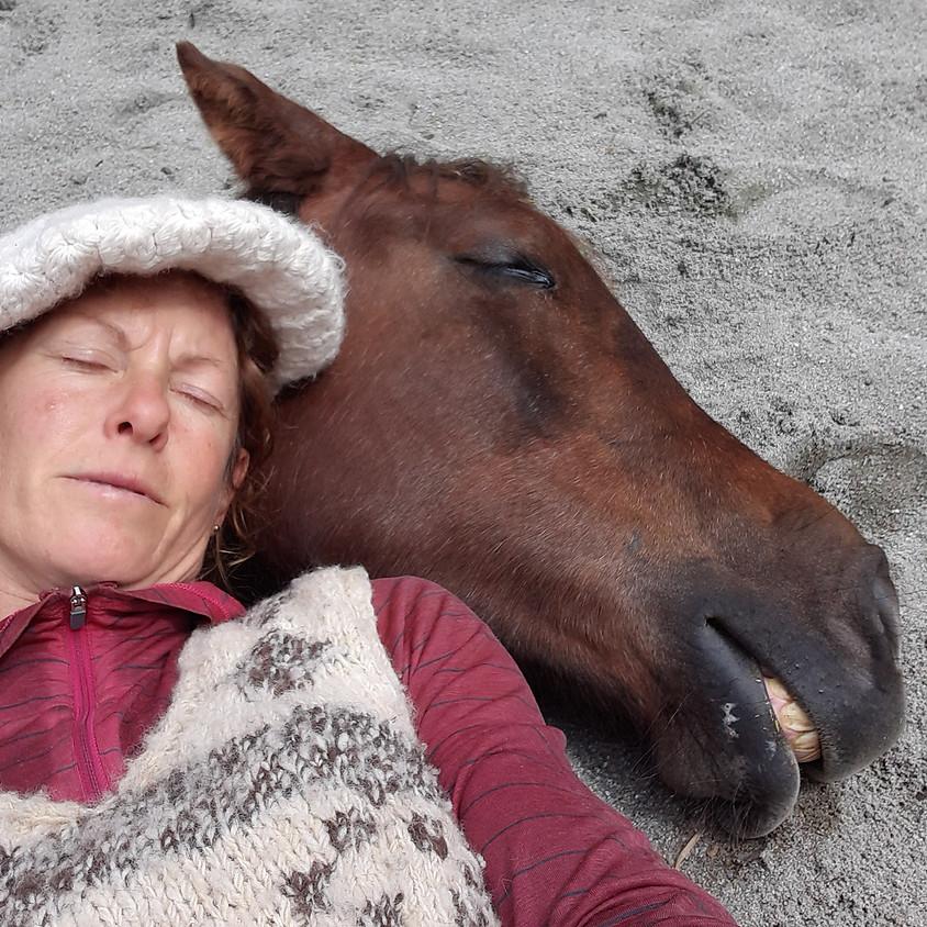 Estar con caballos