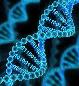 DNA-strand-wity-binary-code_web.jpg