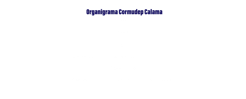 ORGANIGRAMA-NUEVO.png