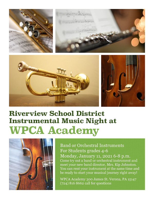 Flyer for Riverview USE-page-0.png