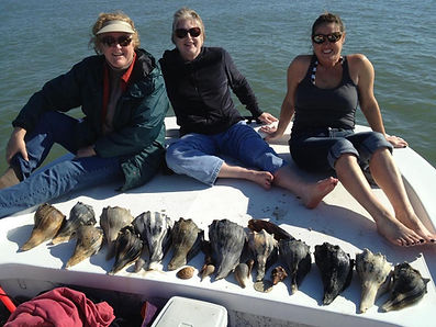 Tours Trips St George Island Charters