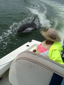 Dolphin Trips, St. George Island