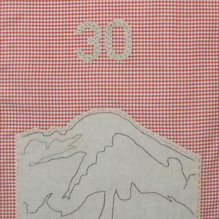 far - 2010 (linen on cotton gingham)