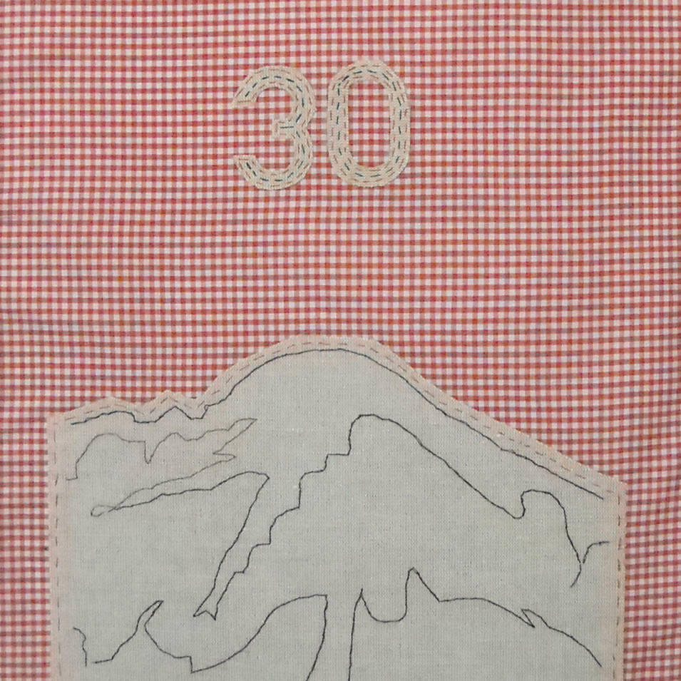 far - 2010 (linen on cotton gingham)
