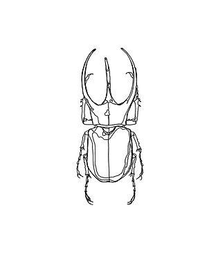 SCARABEE-2-Nude.jpg