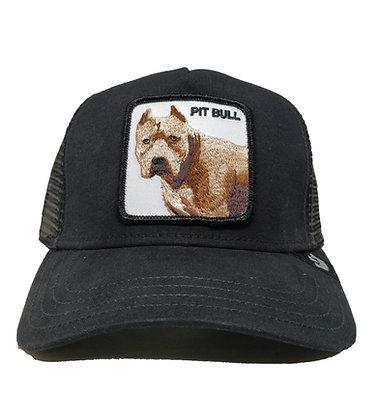 Goorin Bros - Pittbull - כובעי גורין - כלב פיטבול