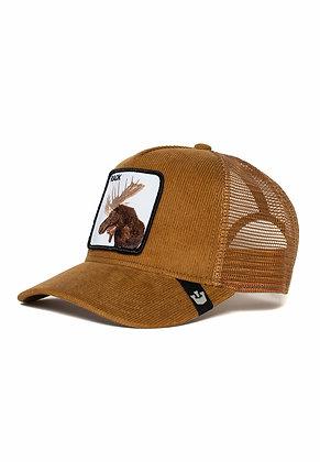 Goorin Bros | Rack | כובעי גורין | מוס