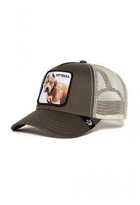 Goorin Bros | Pitbull | כובעי גורין | כלב פיטבול