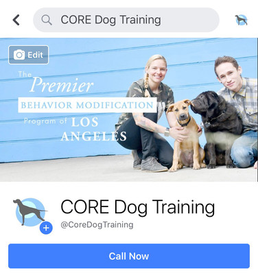 CORE Dog Training