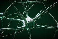 Atlas decreases nerve signals
