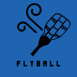 FLYBALL ICON