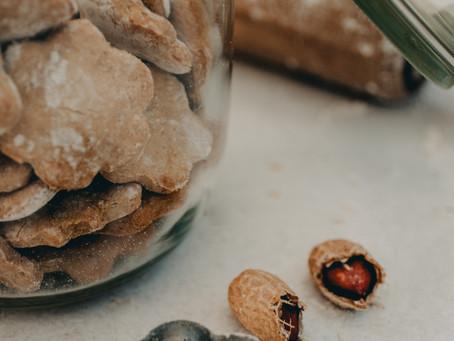 Receita de biscoitos rápida e fácil