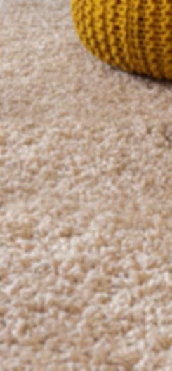 premium carpet vacuum cleaning.jpg