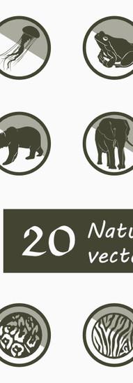 Nature - animals.jpg