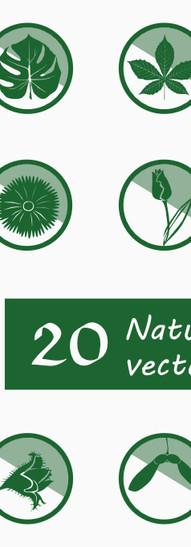 Nature -plants.jpg