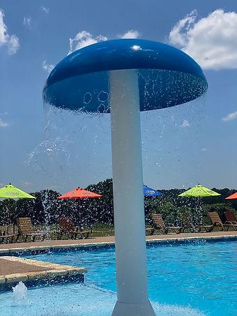 New pool.jpg