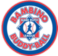 sponsor-Bambino.png