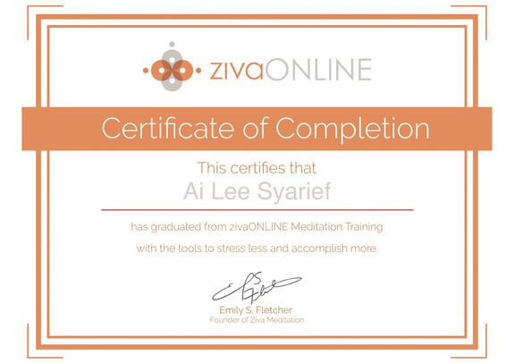 Ziva Mation Training