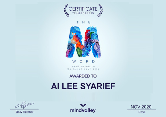Mindvalley - The M Word