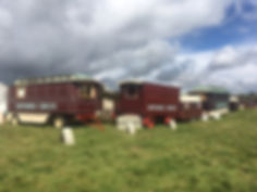 Gifford's Circus Wagons