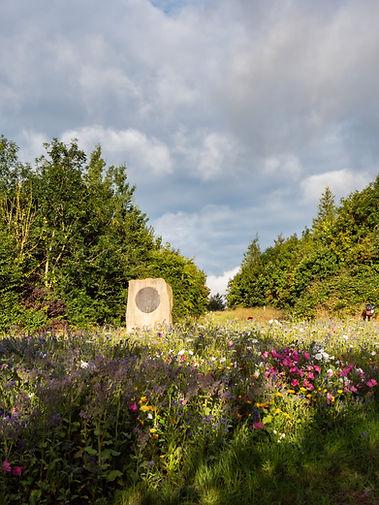 West Park - Darlington- Landscape.jpg
