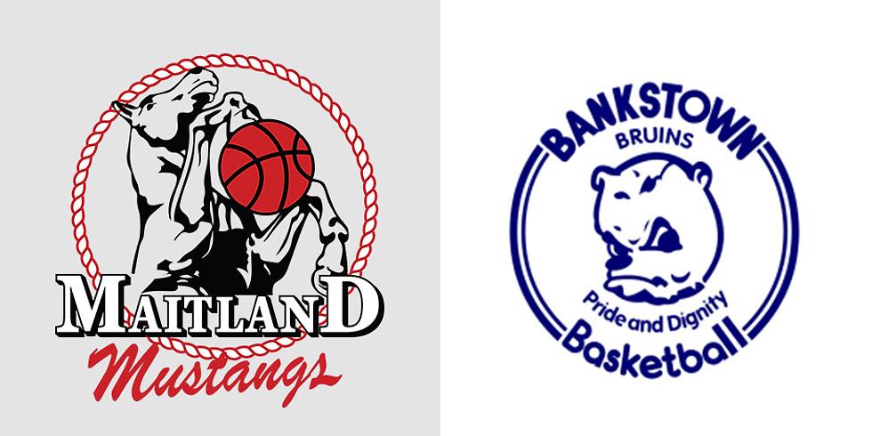 Home Game: Mustangs vs Bankstown Bruins