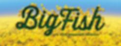 big-fish-banner.jpg