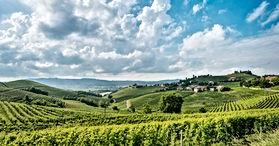 Italian Wines v1.9_html_m290fa01f.jpg