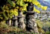 Italian Wines v1.9_html_746db5fa.jpg