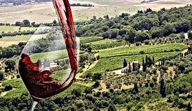 Italian Wines v1.9_html_b534cf7.jpg