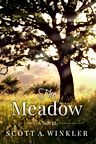 The Meadow Cover.jpg