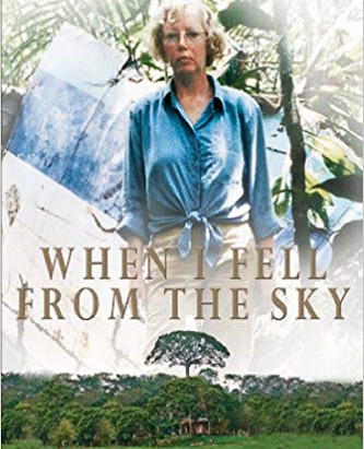 Top Read: When I Fell From the Sky