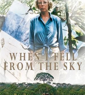 When I Fell From the Sky