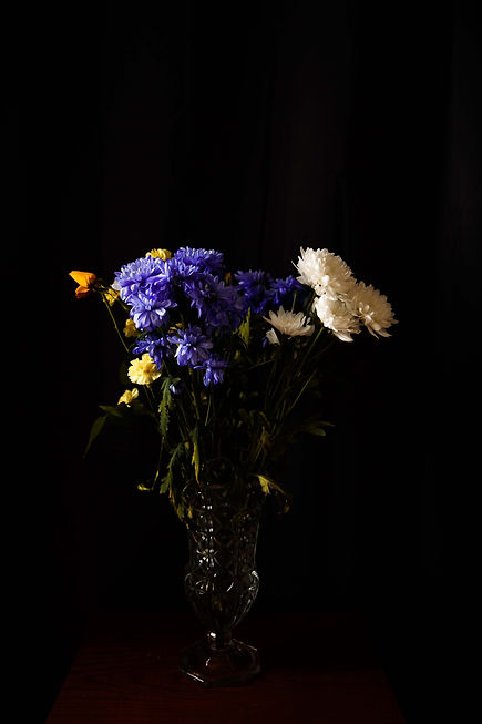 nightflowers4.jpg