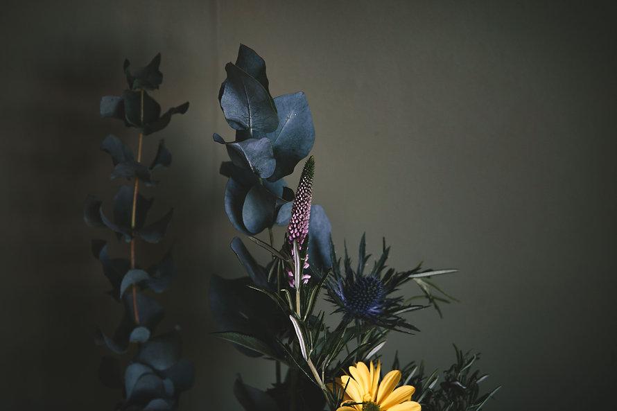 petals27.jpg