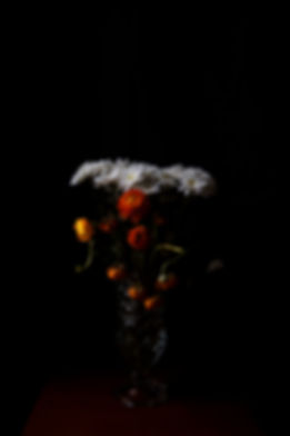 nightflowers1.jpg