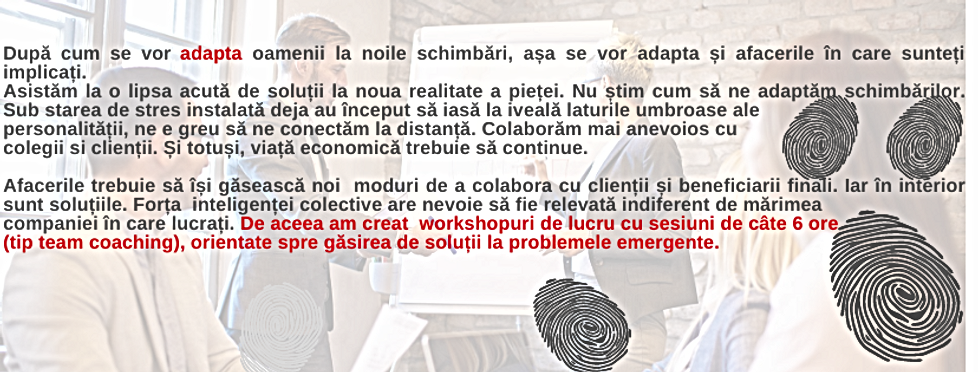 workshop 6 ore.png