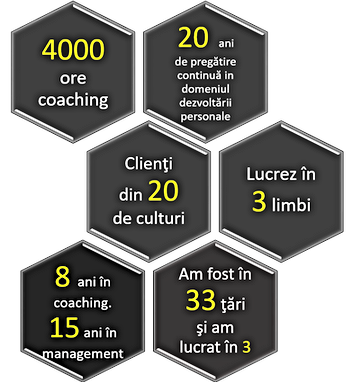 grafic cifre despre mine.png