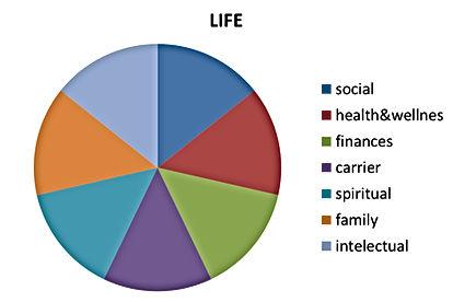 life chart.jpg