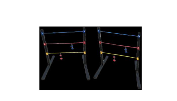Ladderball Game