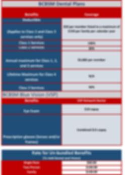 2020 BCBSM Benefit Highlightsdental.jpg