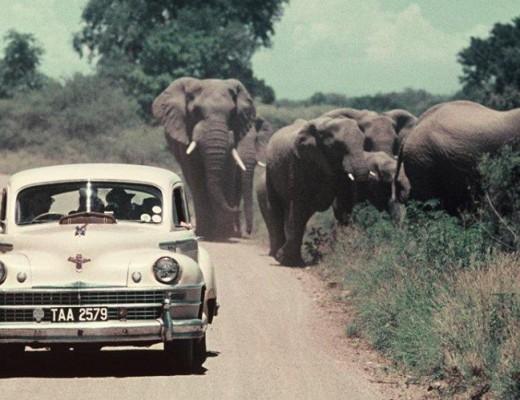 KNP-Motoring-1940s