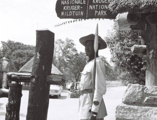 KNP-Gate