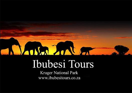 Kruger Park Safari | Tour Operator