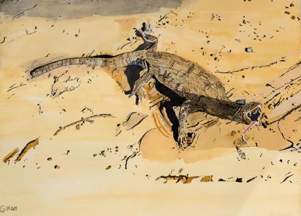 Russischer Wüstenvaran