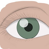 How-to-draw-an-eye.jpg