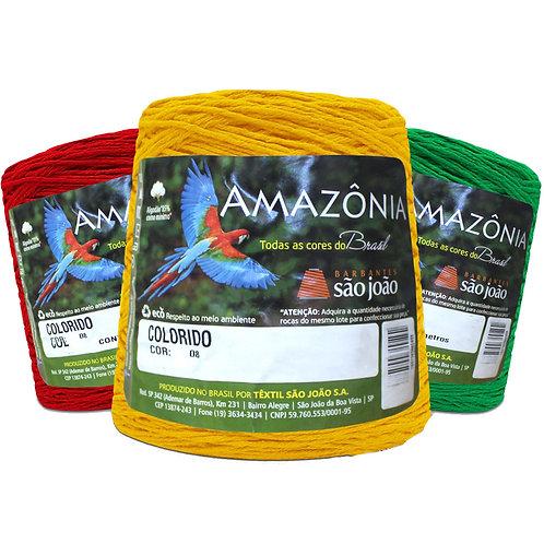 Amazônia nº 6  700g Colorido
