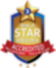 River Rock WALA Star Logo-0619-00805.png