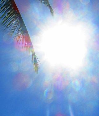 Light returning.jpg