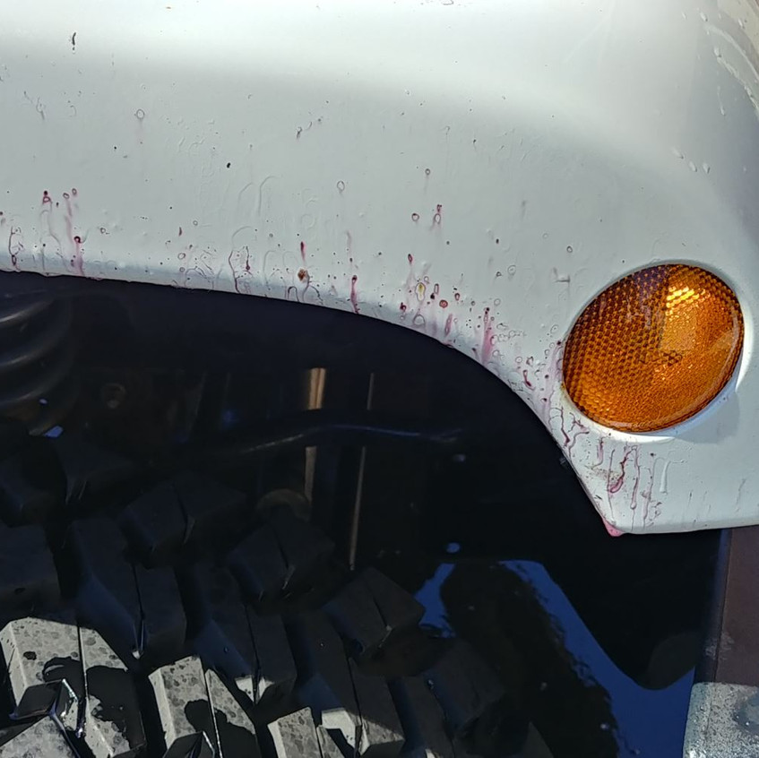 Jeep Wrangler detailing iron removal dur
